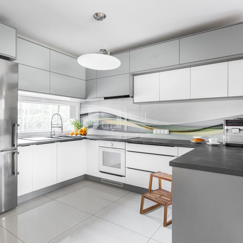 Cucina grigia e bianca immagine stock. Immagine di appartamento ...