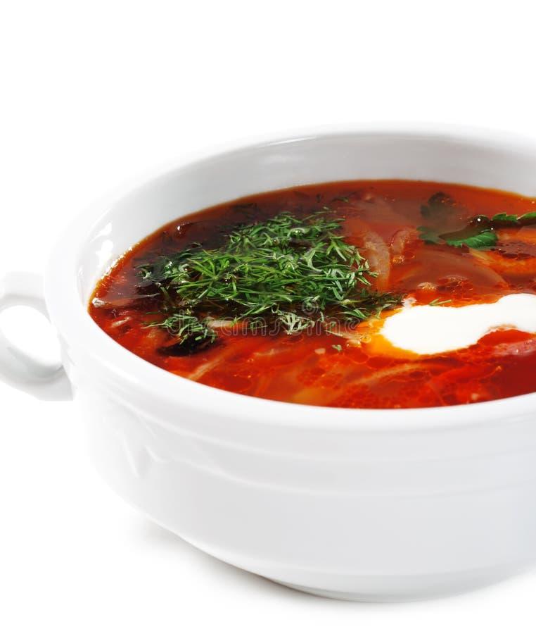 Cucina russa ed ucraina - minestra Solyanka fotografie stock