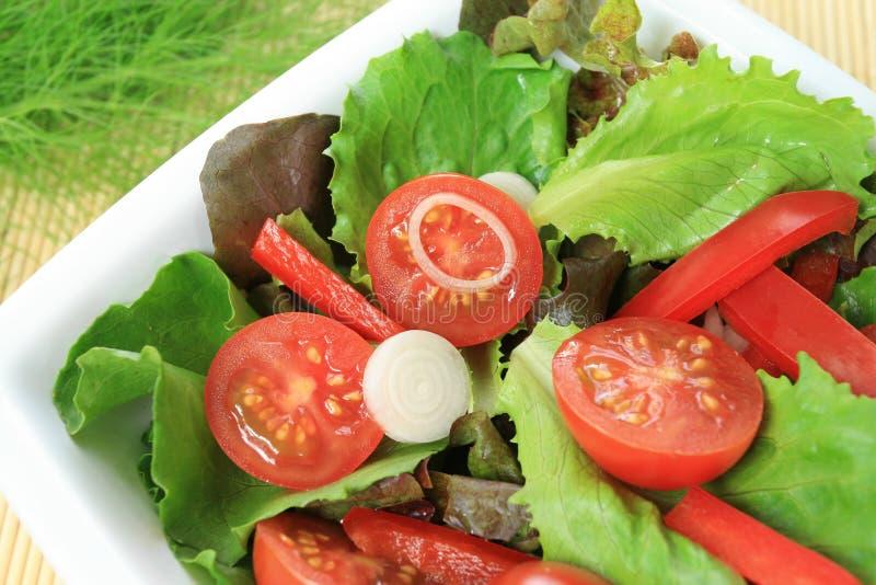 Cucina vegetariana variopinta fotografia stock