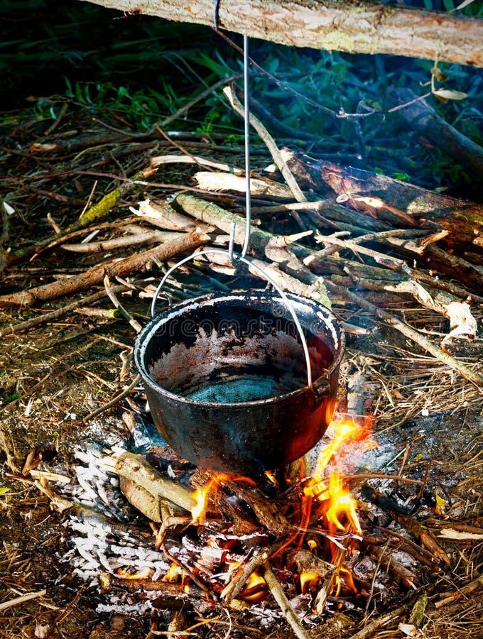 Download Cucinando nel legno immagine stock. Immagine di campfire - 30829799