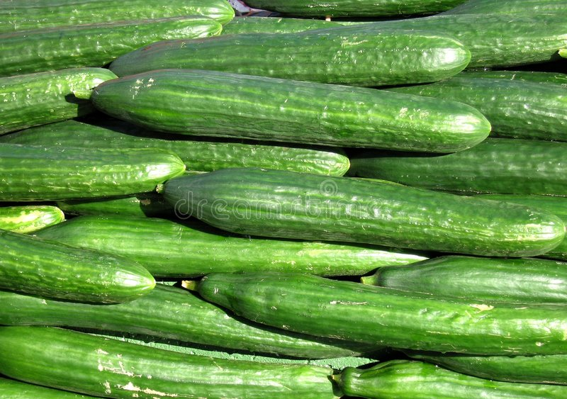 Download Cucumber Royalty Free Stock Photos - Image: 191988