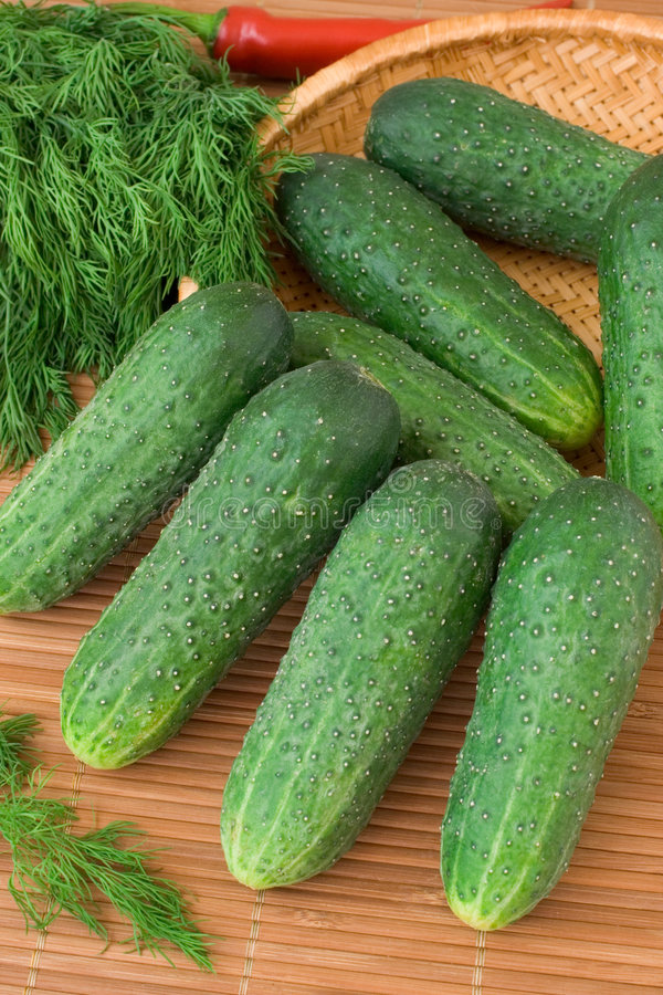 Cucumber. Fresh cucumber from market on a table royalty free stock photo