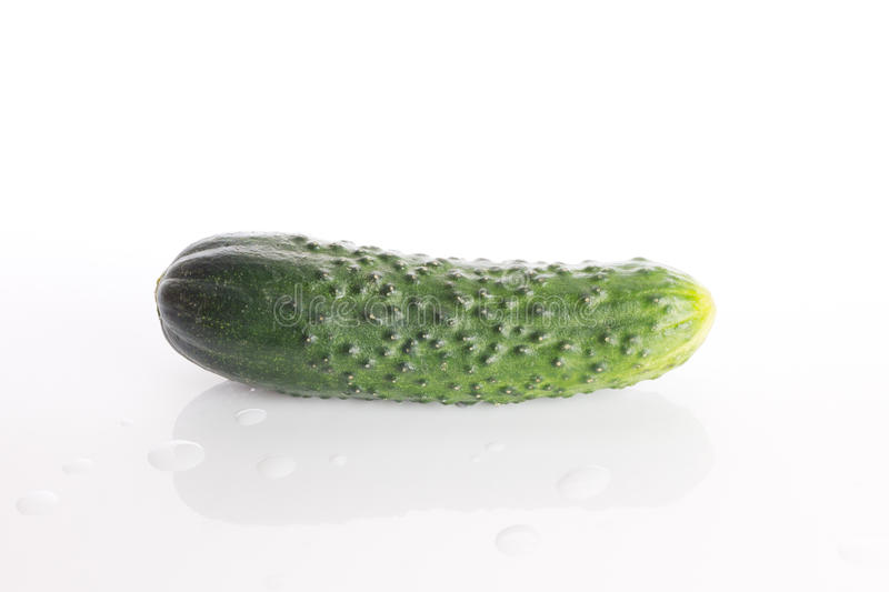 Download Cucumber stock image. Image of white, ripe, cucumber - 25289717