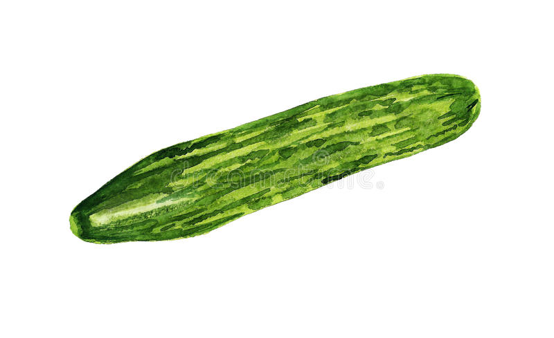 Download Cucumber Royalty Free Stock Photography - Image: 25690907