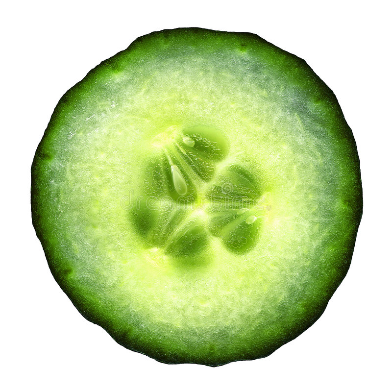 Cucumber royalty free stock images