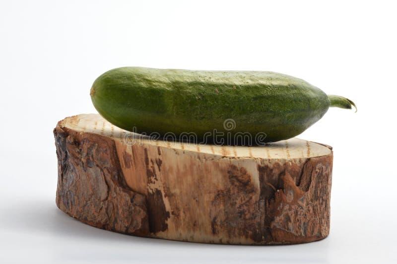 Cucumber on circle tree slice stock photo