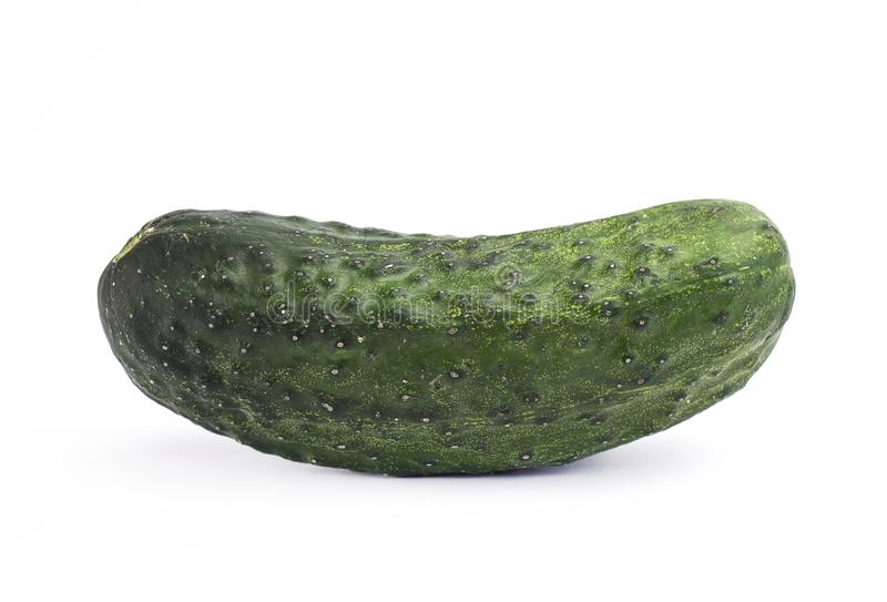 Cucumber - cornichon royalty free stock images