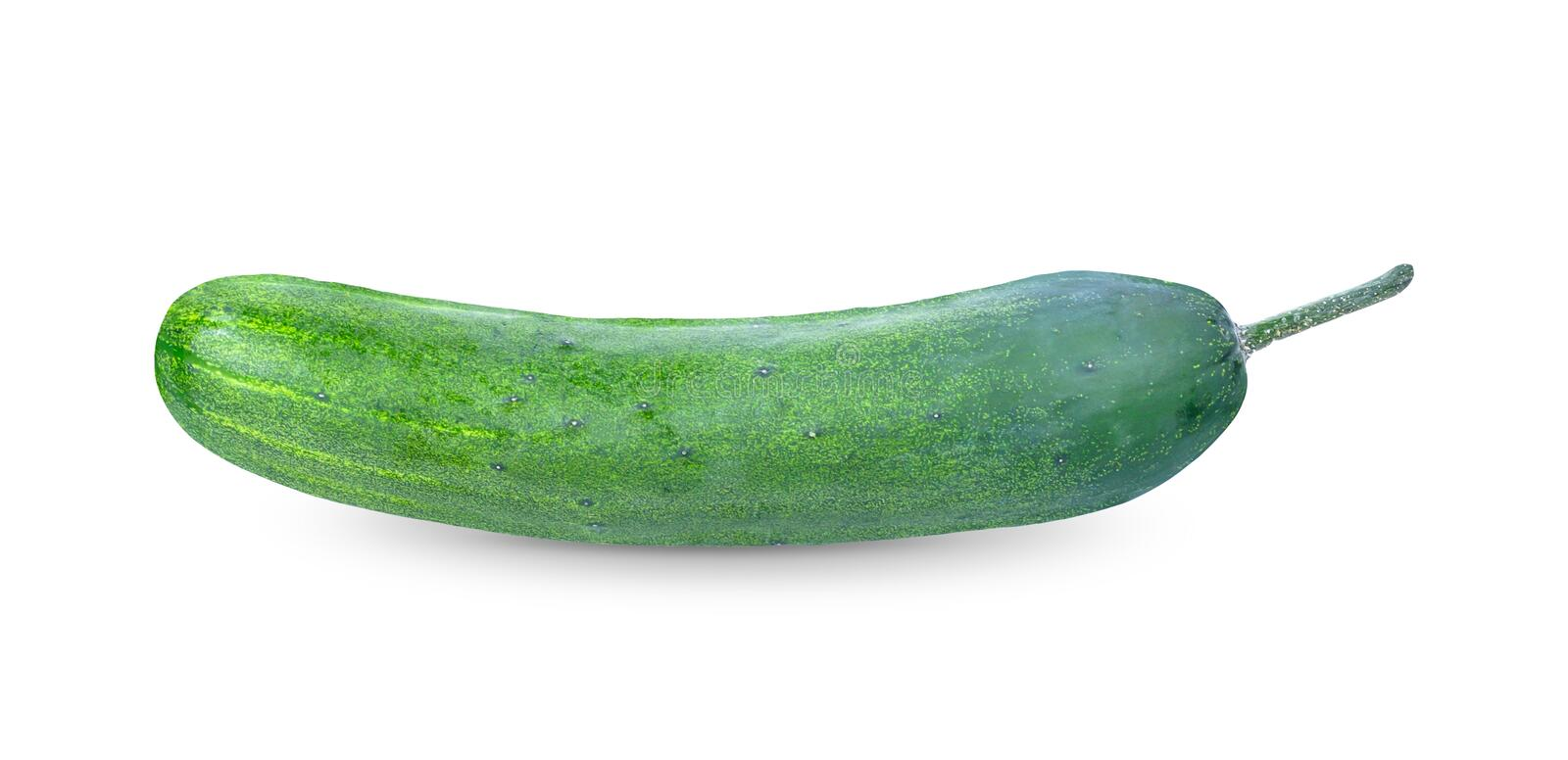 Cucumber on white background. with clipping paths royalty free stock photo