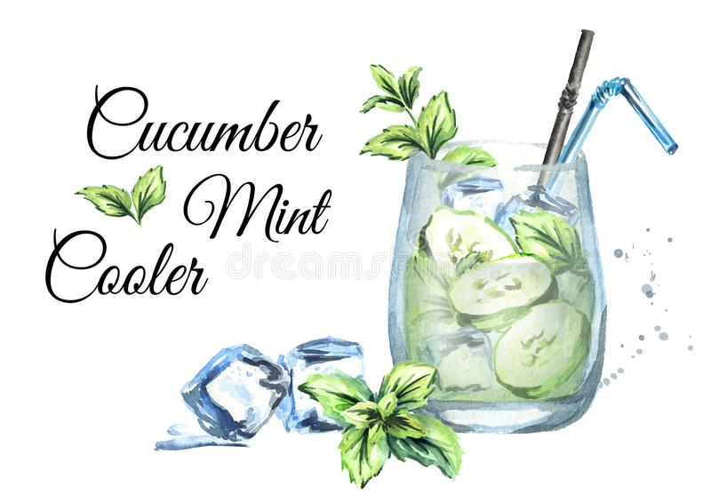 Cucumber Mint Cooler card, isolated on white background. Watercolor hand drawn illustration. Cucumber Mint Cooler card, isolated on white background. Watercolor vector illustration