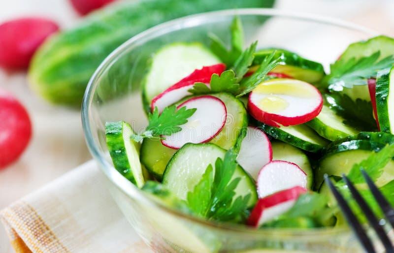 Cucumber and radish salad stock photo