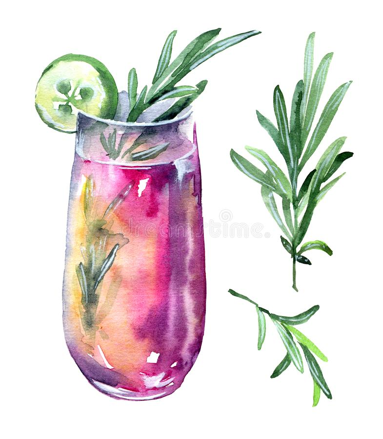Cucumber and rosemary cocktail stock illustration