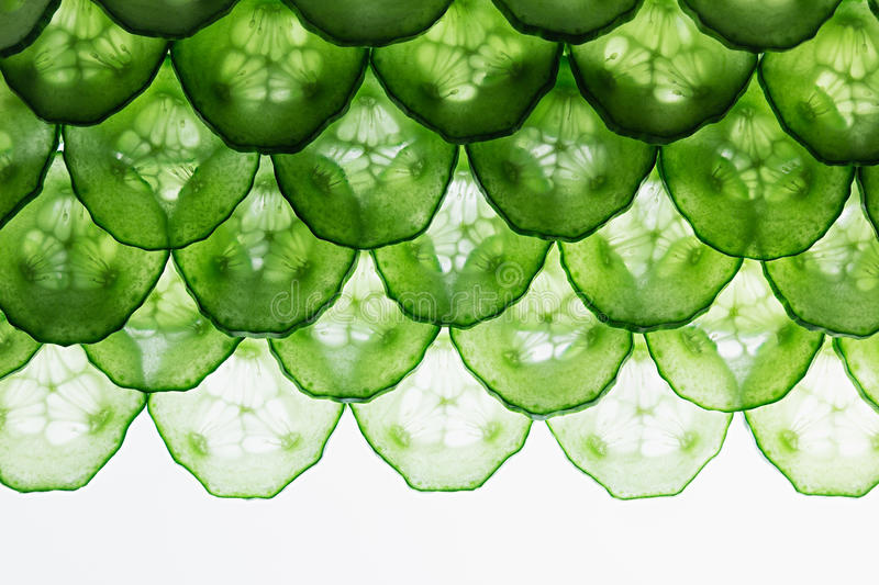 Cucumber slices. Pattern. Frame with the copy space. Food background. Macro. Texture stock photo