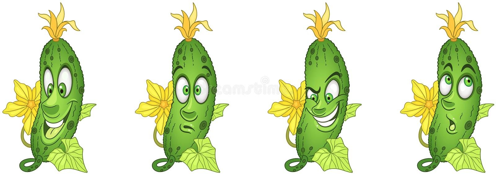 Cucumber. Vegetable Food concept royalty free stock images