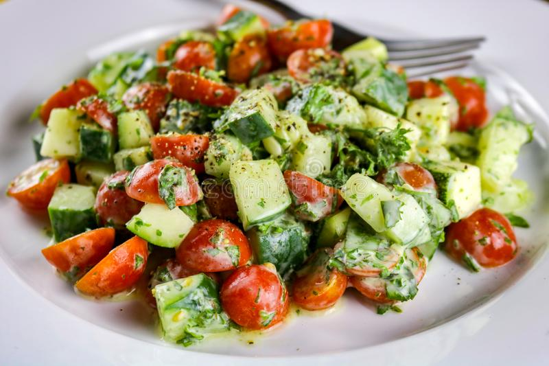 Cucumber, Zucchini, Tomato & Herb Salad with a Creamy Vinaigrette Dressing royalty free stock image