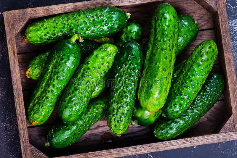 Cucumbers. In box and on a table stock photo
