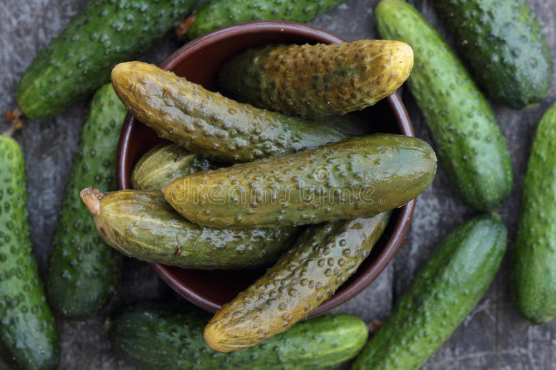 Cucumbers. stock images