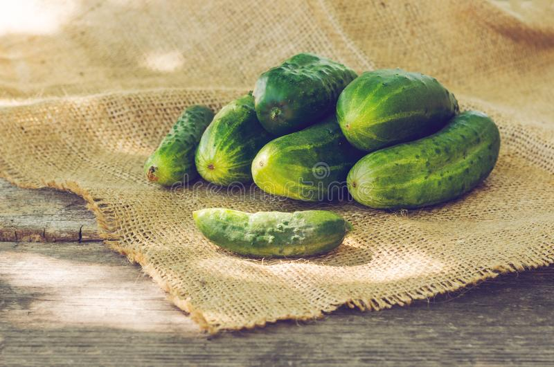 Image result for cucumber on the wooden table