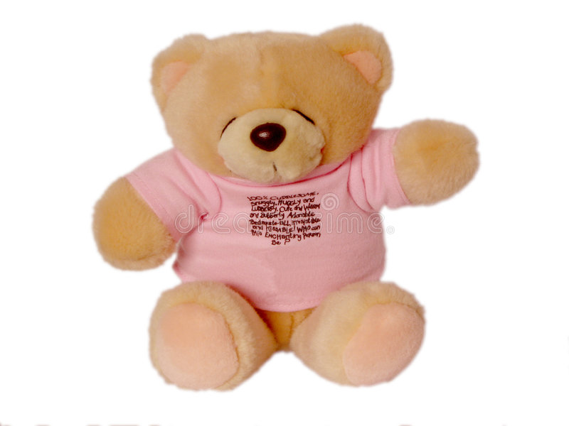 Download Cuddle Doll stock image. Image of anniversary, smile, isolated - 447787