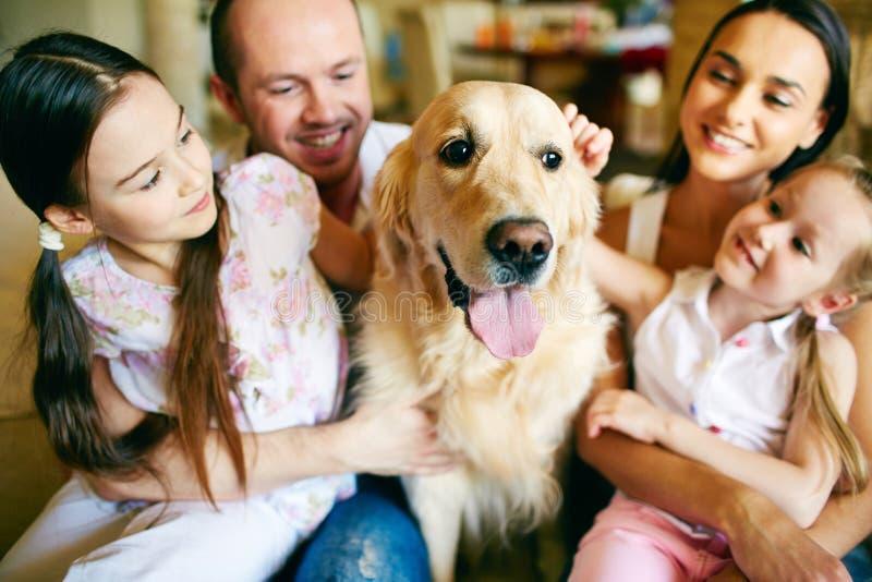 Cuddling dog royalty free stock image