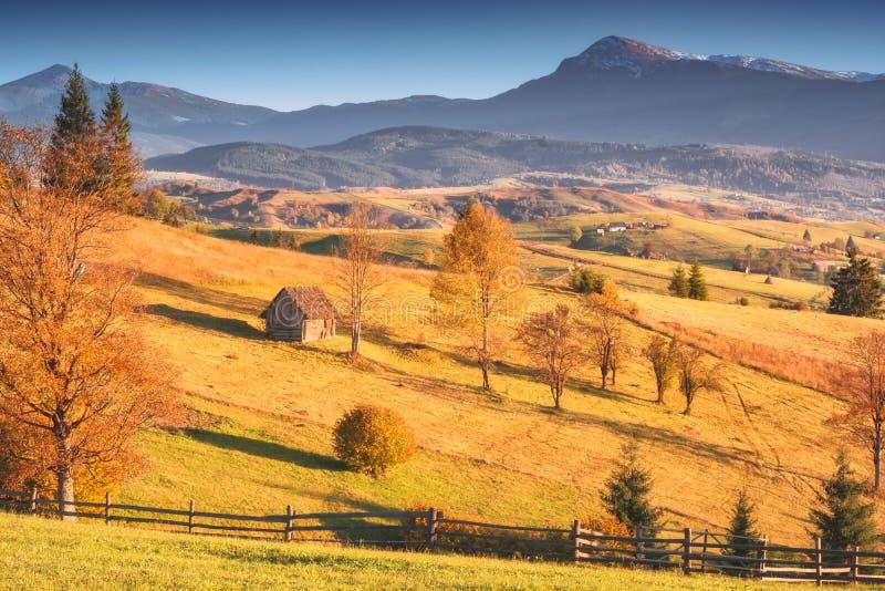 cudowna natury sceneria Karpackie g?ry zdjęcie royalty free
