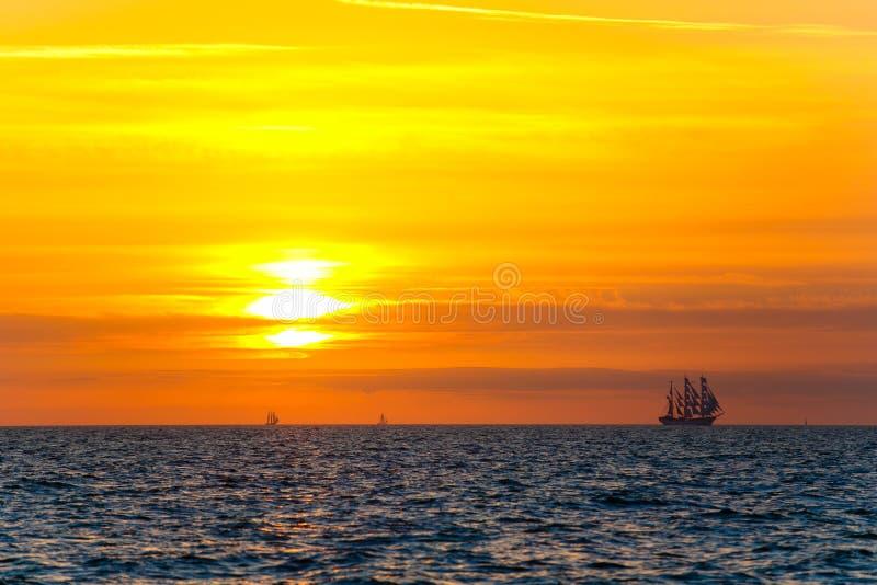 Cudowna podróż wokoło ziemi tła plaży gałąź krajobrazu morski zmierzchu drzewo Jaskrawy słońce nad morzem Podróżny pojęcie obraz royalty free