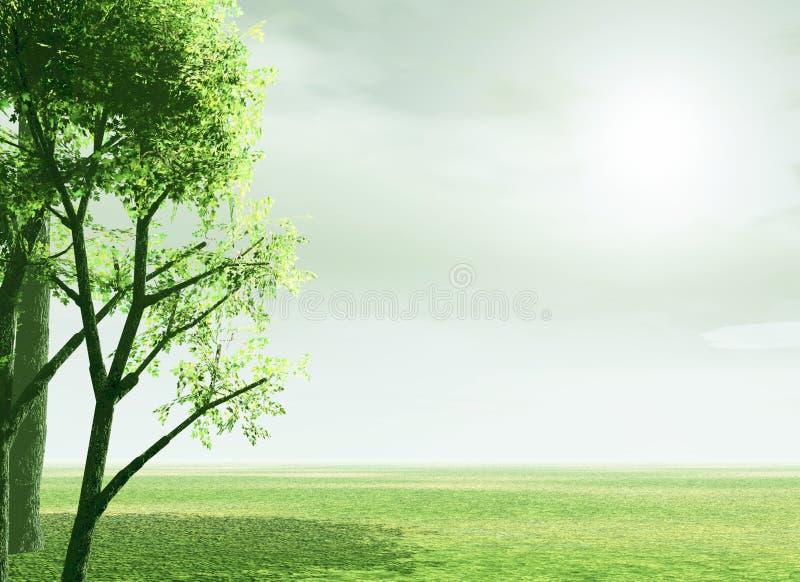 cudowna scenerii wiosna zdjęcie stock