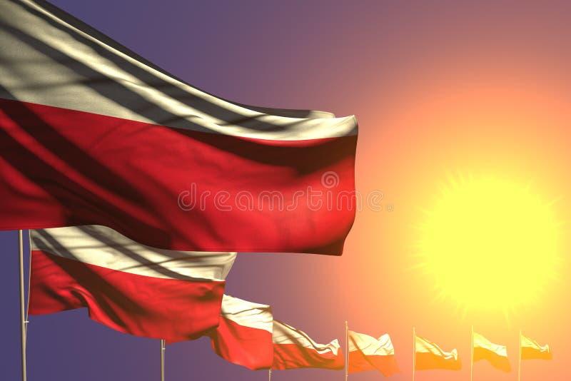 Cudowne wiele flagi umieszczająca Polska przekątna na zmierzchu z miejscem dla twój teksta - jakaś świętowanie flagi 3d ilustracj royalty ilustracja