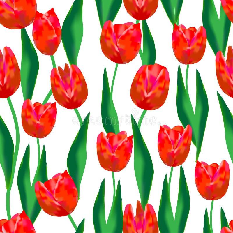 Cudowni Czerwoni tulipany i zieleń liście na białym tle Cudowny bezszwowy wzór ilustracji