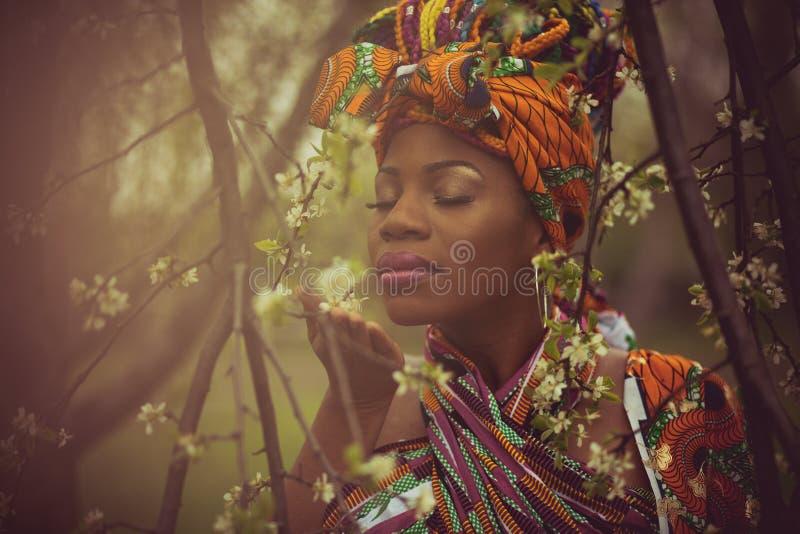 Cudowni perfumowania wiosna obrazy royalty free