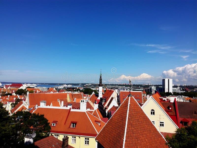 Cudowni widoki stary Tallinn fotografia stock
