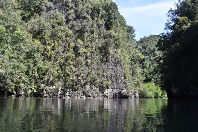 Cudowny górzysty krajobraz przy kajak wycieczką w namorzynowego las w Ao Thalaine w Krabi w Tajlandia, Azja obrazy stock