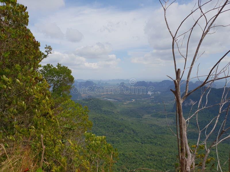 Cudowny górzysty krajobraz przy kajak wycieczką w namorzynowego las w Ao Thalaine w Krabi w Tajlandia, Azja obraz stock