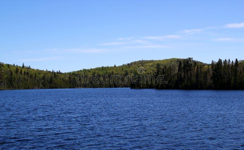 Cudowny letni dzień: Piękny jezioro w Ontario zdjęcie stock