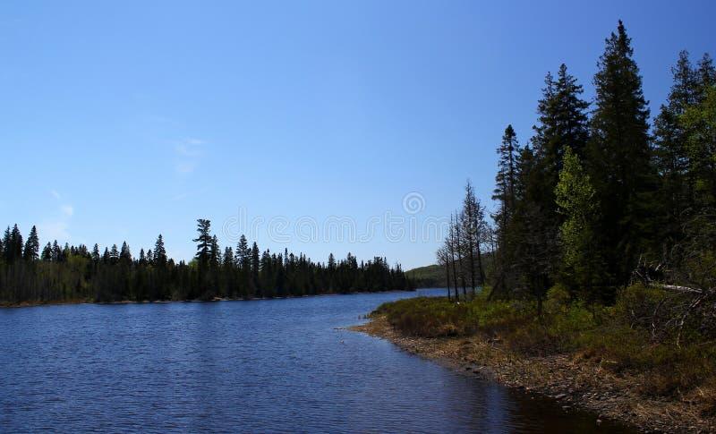 Cudowny letni dzień: Piękny jezioro w Ontario obrazy royalty free