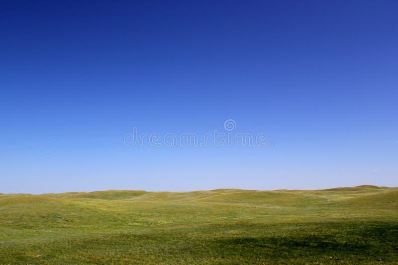 Cudowny preryjny tło piękni traw wzgórza i jasny niebieskie niebo - zdjęcia stock
