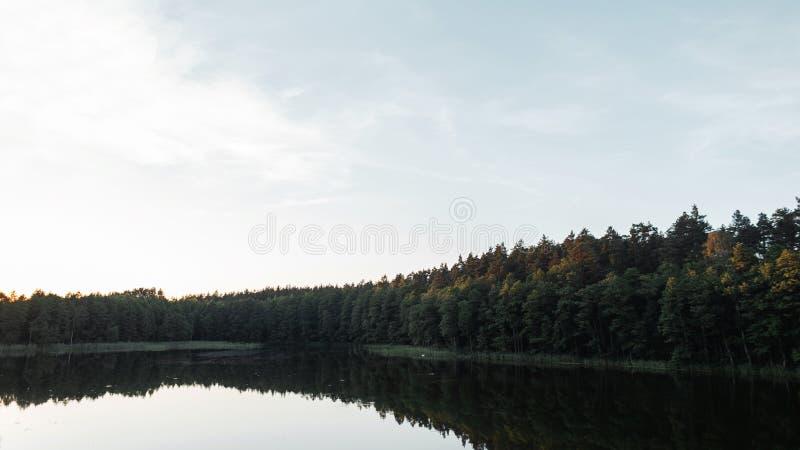 Cudowny widok jezioro w lesie na ciepłym letnim dniu obraz royalty free