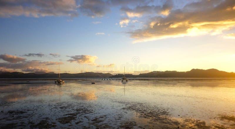 Cudowny zmierzch przy Naturalnym schronieniem miasteczko Coromandel, Północna wyspa, Nowa Zelandia fotografia royalty free