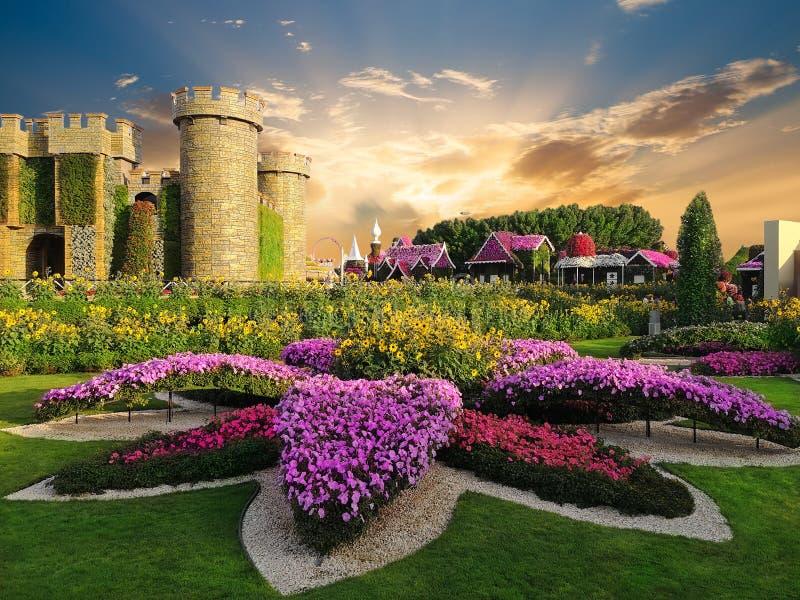 Cudu ogród w Dubaj w zmierzchu świetle obraz stock