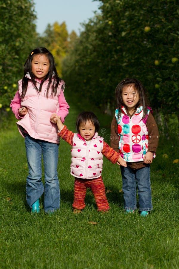 Cueillette d'Apple de soeurs photo libre de droits