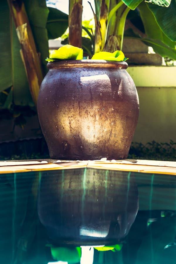 Cuenco asiático de la decoración del estilo del zen en la piscina con agua de la turquesa y reflexiones en jardín tropical con fo imagenes de archivo
