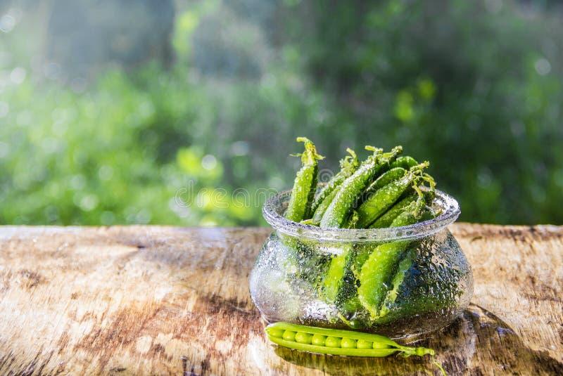 Cuenco con los guisantes verdes en la tabla Tabla del verano en el jardín Vainas de guisante verde fotografía de archivo libre de regalías