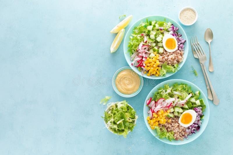 Cuenco de Buda con el huevo hervido, el arroz y la ensalada vegetal de las semillas frescas de la lechuga, del rábano, del pepin foto de archivo