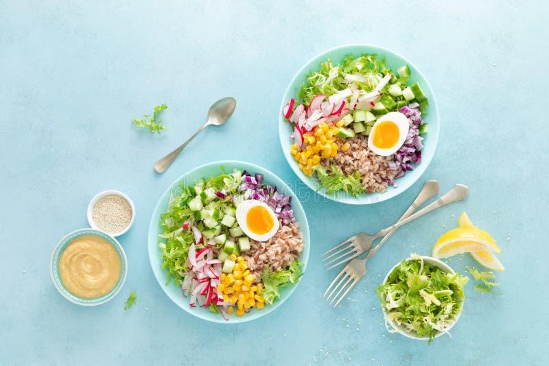 Cuenco de Buda con el huevo hervido, el arroz y la ensalada vegetal de las semillas frescas de la lechuga, del rábano, del pepin fotografía de archivo