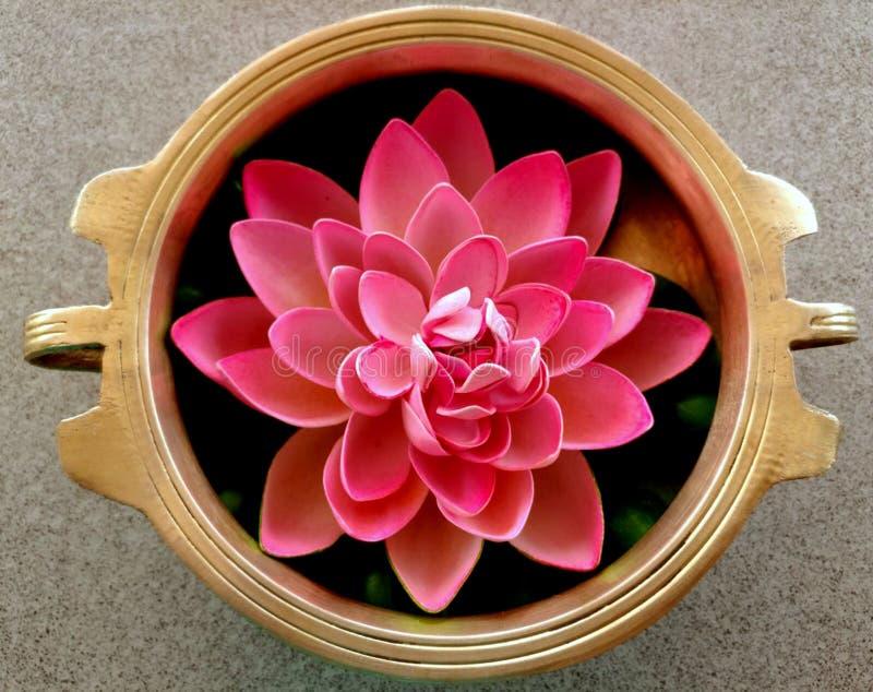 Cuenco de cobre amarillo con la flor de loto fotos de archivo