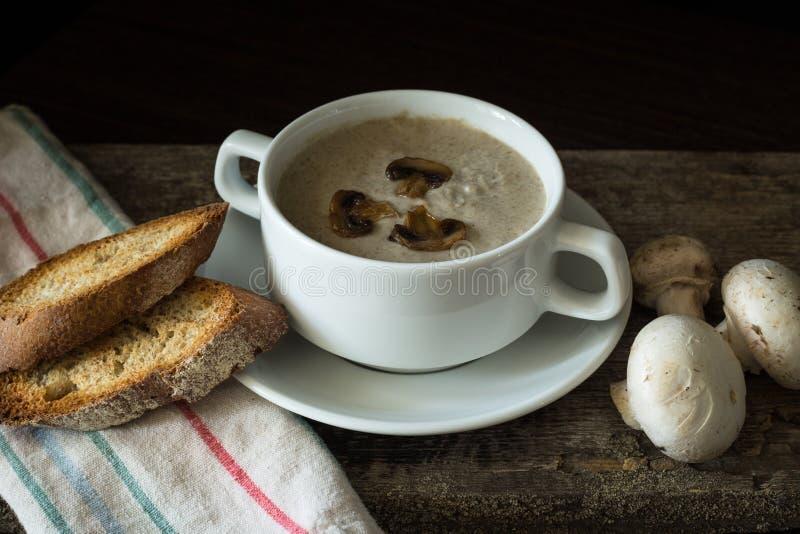 Cuenco de puré de la sopa de champiñones con algunas setas imagen de archivo libre de regalías