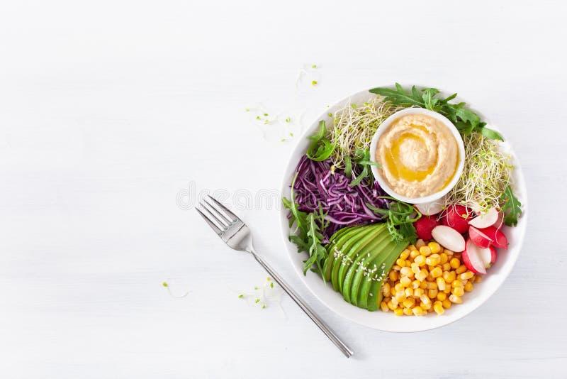 Cuenco del almuerzo del maíz dulce del aguacate del vegano con hummus, la col roja, el rábano y los brotes imágenes de archivo libres de regalías