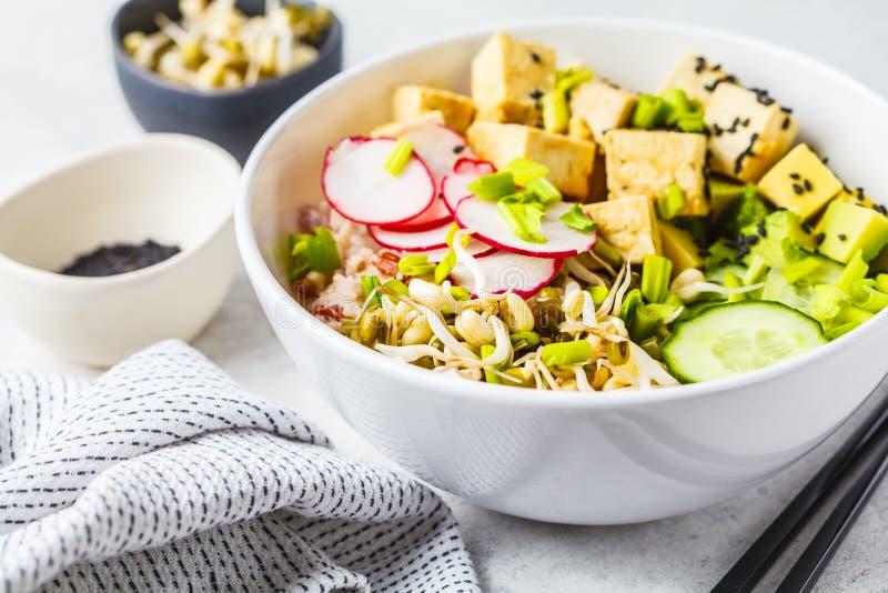 Cuenco del empuje del vegano con el queso de soja, las verduras y el arroz conservados en vinagre en un cuenco blanco imagen de archivo