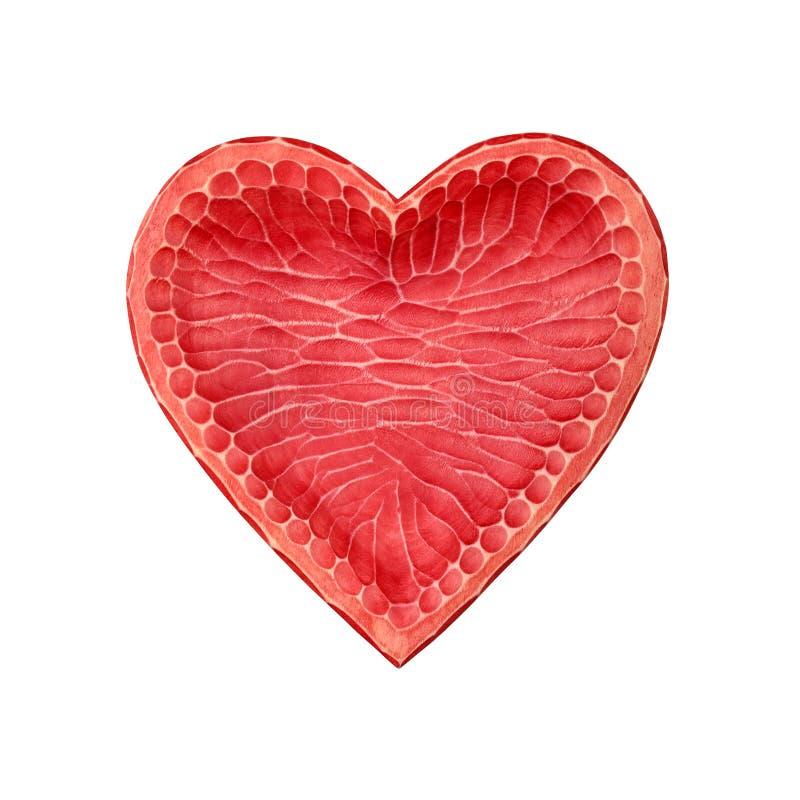 Cuenco en forma de corazón de madera rojo aislado en blanco imagen de archivo