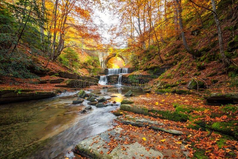 Cuento de hadas del otoño por el río fotografía de archivo libre de regalías