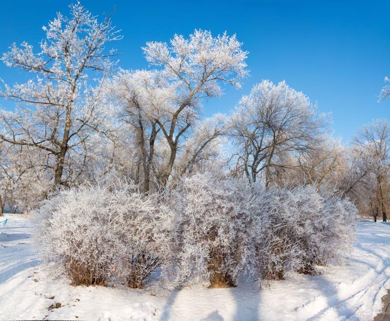 Cuento del ` s del invierno fotos de archivo libres de regalías